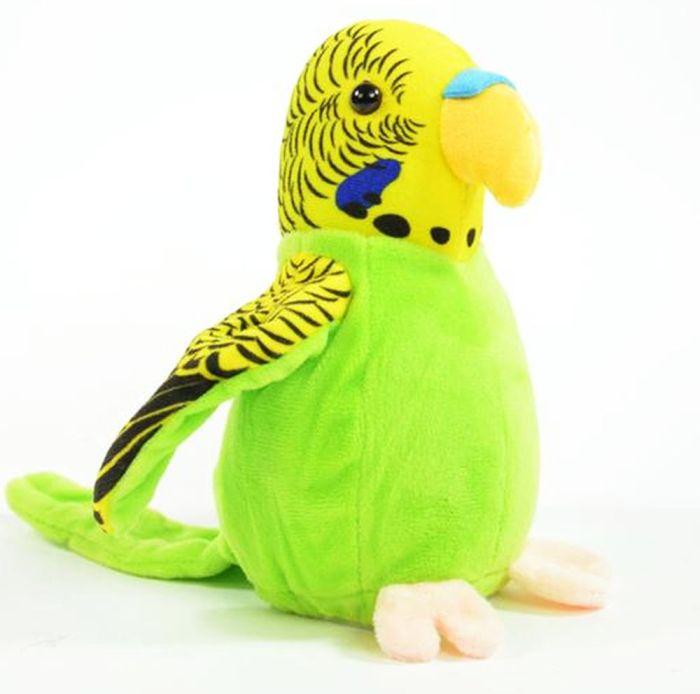 Laber sprechender wellensittich vogel budgie bird plappert